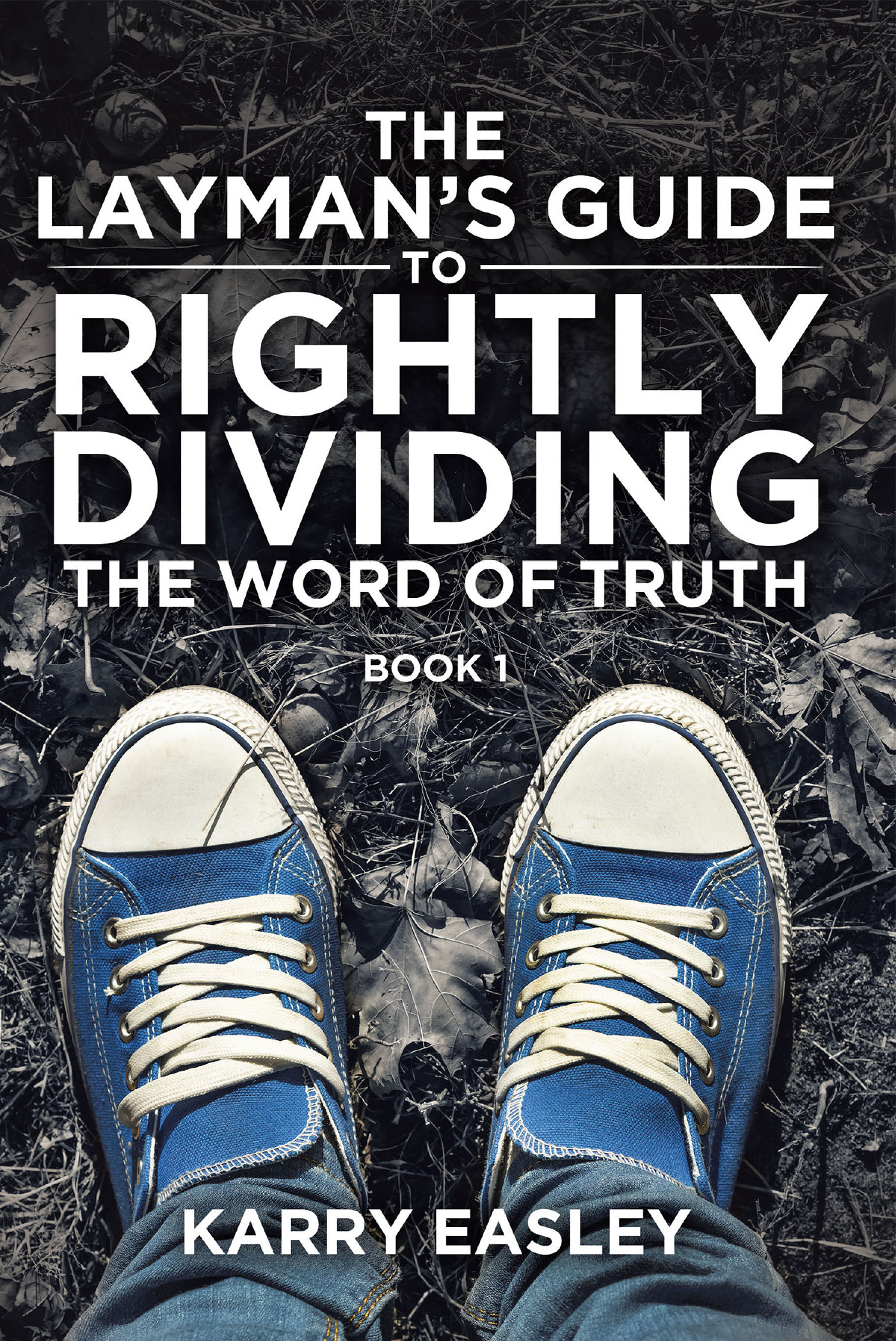 d6ac618a75 The Layman's Guide To Rightly Dividing The Word of Truth